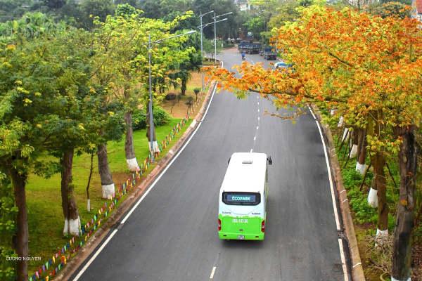 Xe bus Ecopark